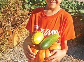 Ivy Cares Club school garden helps students grow