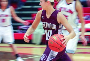 Turnovers doom Lady Spartans