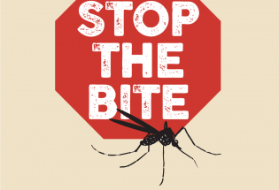 Town of Berthoud to fog for mosquitoes next week