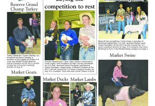 2017 Larimer County 4-H Junior Livestock Auction & Fair Results