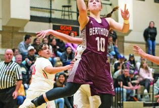Wildcats scratch Lady Spartans out of state playoffs