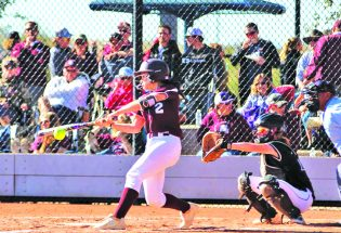 Lady Spartans reach state final four