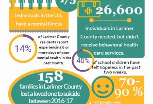 Larimer County Mental Health Initiative