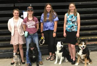 Four Berthoud students compete in dog training/agility at Colorado 4-H State Fair
