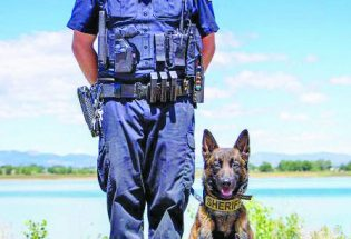 Larimer County Sheriff's Office K9, Tyr, to get donation of body armor