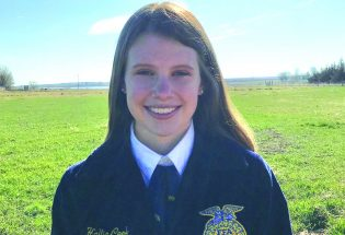 Local FFA program celebrates three state awards, new Berthoud chapter